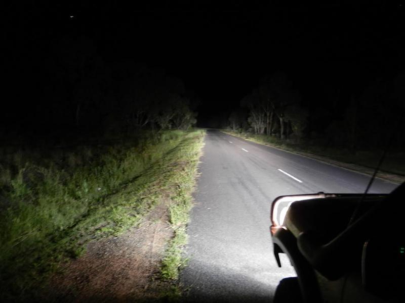 LAMPADE FENDINEBBIA A LED CREE VW GOLF 4 1997-2004 CAMBUS BIANCO GHIACCIO